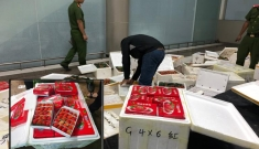 Tội ác nhìn từ quả dâu tây Trung Quốc
