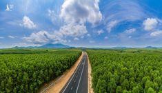 Khởi công 3 dự án cao tốc Bắc Nam vào tháng 9 và hoàn thành năm 2022