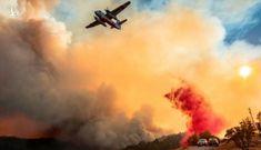 Tổng thống Donald Trump tuyên bố tình trạng thảm họa ở California