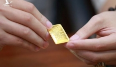 Vàng rơi thẳng đứng về 53 triệu đồng/lượng