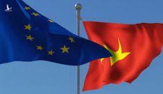 Việt Nam – Đất nước đi tiên phong trong thiết lập khu vực FTA với EAEU