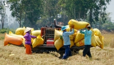 Báo Thái: Việt Nam đang khiến cả Đông Nam Á ghen tị
