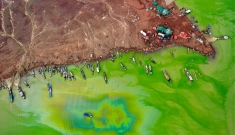 Mùa tảo xanh ở hồ Trị An
