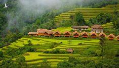 Các homestay Hà Giang cho chuyến ngắm mùa vàng Hoàng Su Phì