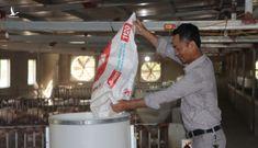 Thứ trưởng Bộ NNPTNT: 10 năm nữa, ngành chăn nuôi Việt Nam sẽ vào nhóm tiên tiến trong khu vực