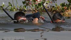 Hé lộ quy trình khắc nghiệt tạo nên 3 đặc công cứu sống 8 người ở biển Quảng Trị