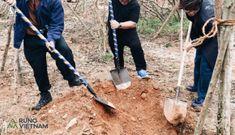 Hà Anh Tuấn khởi trồng 2 cánh rừng đầu tiên trong dự án 'Rừng Việt Nam'