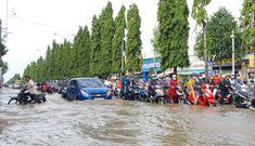Miền Tây 'chìm' trong nước nhưng có nguy cơ hạn mặn khốc liệt