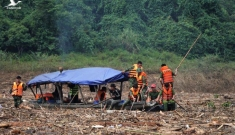 Rẽ gỗ để tìm người sau thảm họa sạt lở ở Trà Leng