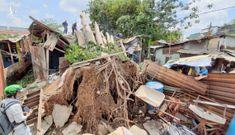 Mẹ ôm con trai chạy khỏi phòng trọ bị cây cổ thụ đè sập ở Sài Gòn