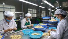 """The Star: Việt Nam xuất khẩu """"vua hạt khô"""" hàng đầu thế giới"""