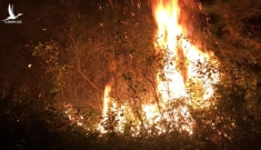 Cháy lớn cạnh trường bắn Sóc Sơn, nửa đêm vẫn chưa dập được lửa