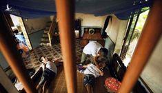 AFP: Pháp sắp xét xử vụ kiện chất độc da cam trong Chiến tranh Việt Nam