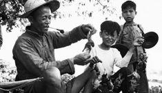 Trung Quốc từng được cứu bởi những chú chim của Liên Xô