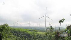 Thủ phủ điện gió số 1 Việt Nam: Khó tin 1 sào đất đồi hét giá 4 tỷ đồng