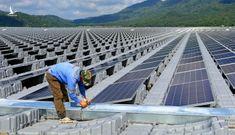 Nghiên cứu phản ánh về cơ chế đấu thầu dự án điện mặt trời quy mô lớn