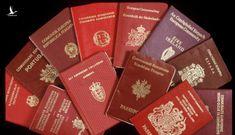 Người ứng cử ĐBQH và HĐND phải ghi rõ đang có hoặc đang xin gia nhập quốc tịch nước khác