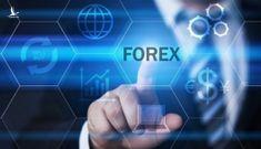 Sàn Forex hoạt động không đúng quy định của pháp luật