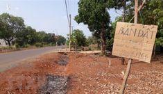 Nhiều địa phương vào cuộc, mạnh tay chặn 'cơn sốt ảo' bất động sản