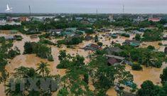 Rừng đầu nguồn sông Bến Hải bị phá: Vì sao chưa tổ chức, cá nhân nào bị kỷ luật?