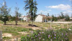 Chính quyền thua kiện vì lấy đất đã giao dân giao địa phương