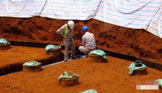 Đa phần dự án điện gió ở Gia Lai sử dụng lao động nước ngoài hoạt động chui