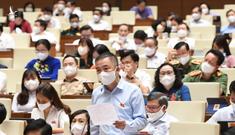 PGS.TS Nguyễn Lân Hiếu đưa ra 3 nguyên tắc trống dịch tại nghị trường