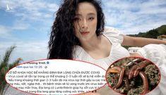 Bộ Y tế lên tiếng về việc Angela Phương Trinh lan truyền chữa trị Covid-19 bằng giun đất