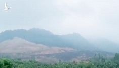 Đường dây than lậu triệu tấn đã 'tác oai, tác quái' ở Thái Nguyên ra sao?
