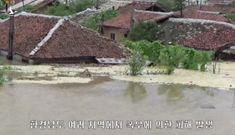 Lũ lụt nhấn chìm hàng nghìn ngôi nhà, hàng trăm cánh đồng tại Triều Tiên
