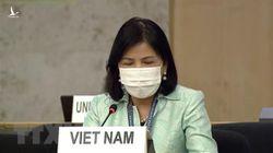 Những kẻ không hiểu gì về nền dân chủ của Việt Nam